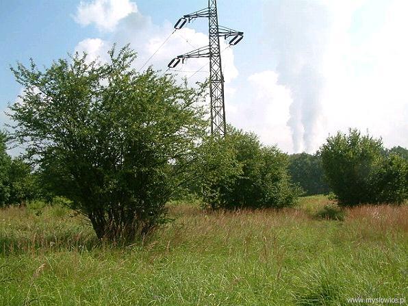 ul. Dworcowa – terenie przygotowywanym do zbycia pod zabudowę na cele działalności gospodarczej