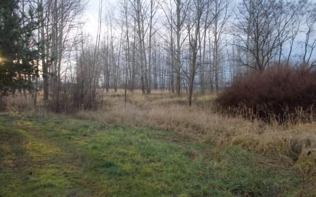 ul. Mikołowska/Obrzeżna Zachodnia – teren niezabudowany na cele usługowe